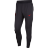 PANTALON NIKE PARIS SAINT-GERMAIN TRAINING 2019/2020